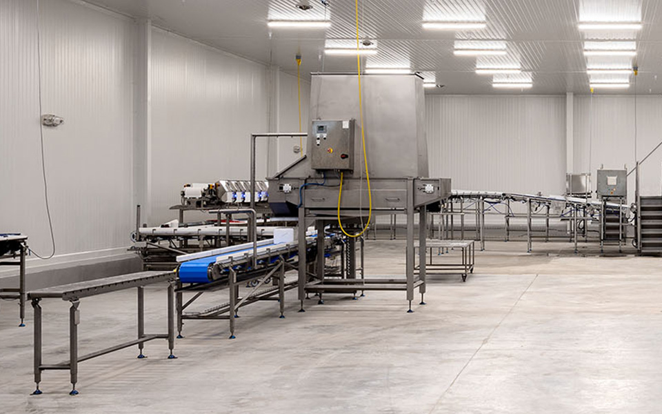 Manufacturing floor with machines for making food or beverages in a plant.